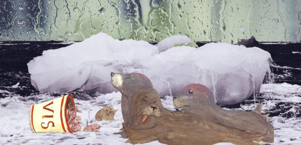 Piet de zeehond