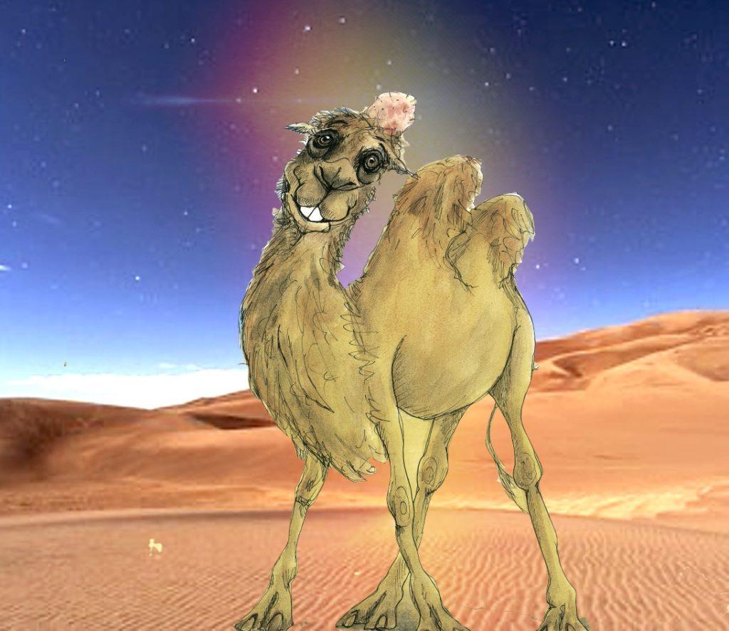 Ali de kameel
